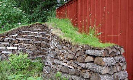 Astrid Lindgrens näs – barndomshemmet