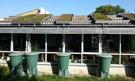Veg Tech undersöker vattenkvalitet från gröna tak