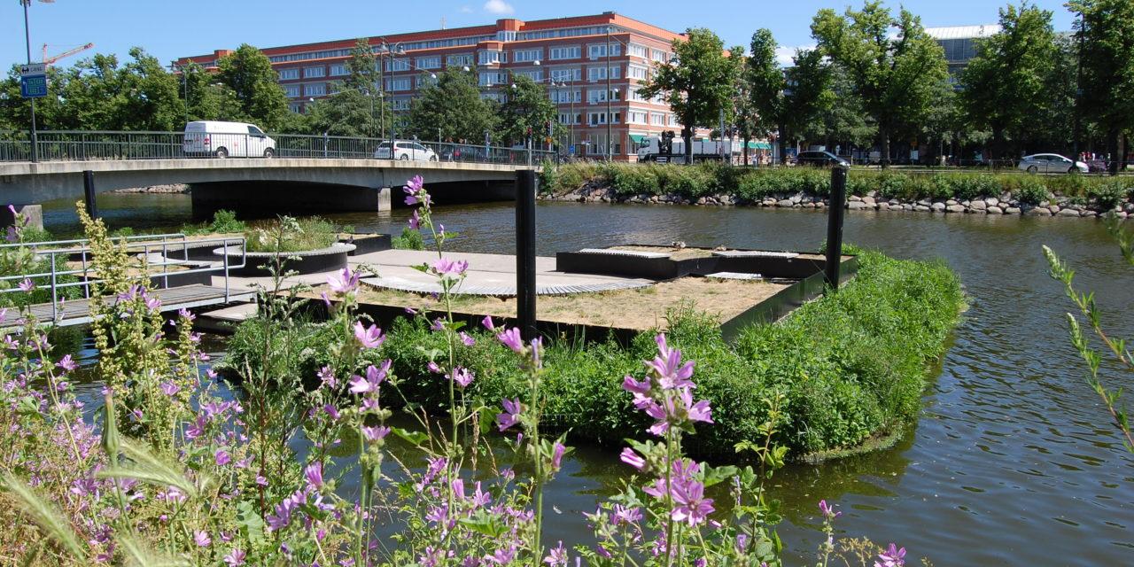 Flytande våtmarksöar – centrala Malmö