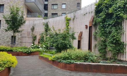 Gröna Vajern – vertikal grönska på fasaden!