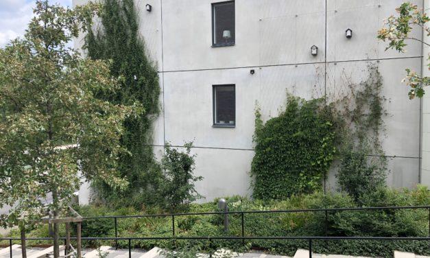 Gröna fasader i Norra djurgårdsstaden