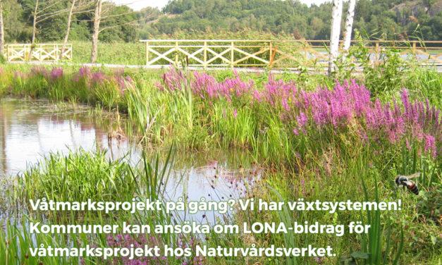 Planeras det våtmarker?