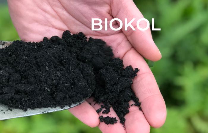 Veg Tech har deltagit på Sveriges första biokolskonferens!