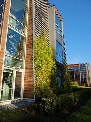 Gröna fasader