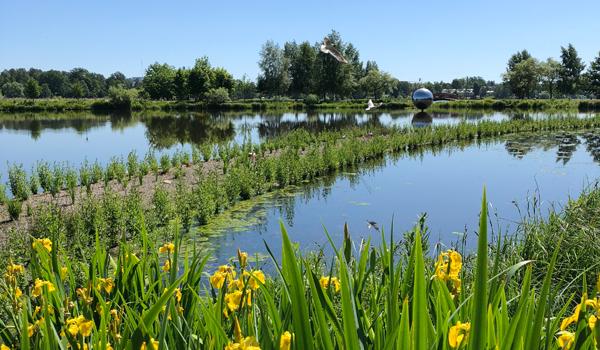 Översilningsvall lagunen
