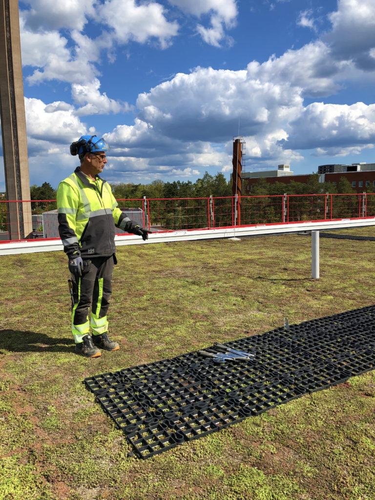 Textruta: Anders Andersson från Veg Tech visar runt på taket.