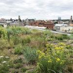 Veg Tech har levererat Gröna växtsystem till foajén, vinnare av Sweden Green Building Awards