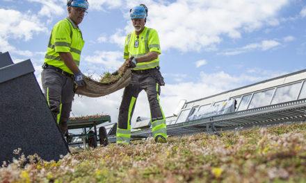 Klimatsmarta gröna tak med biokol bidrar till årlig kolsänka på 335 ton koldioxidutsläpp