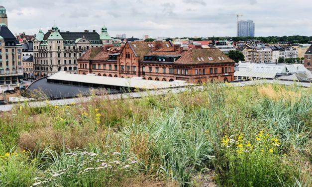 Bengt-Erik Karlberg, Affärsenhetschef Veg Tech, lämnar Nordic Waterproofing