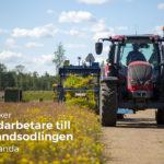Vi anställer ny personal inom odling